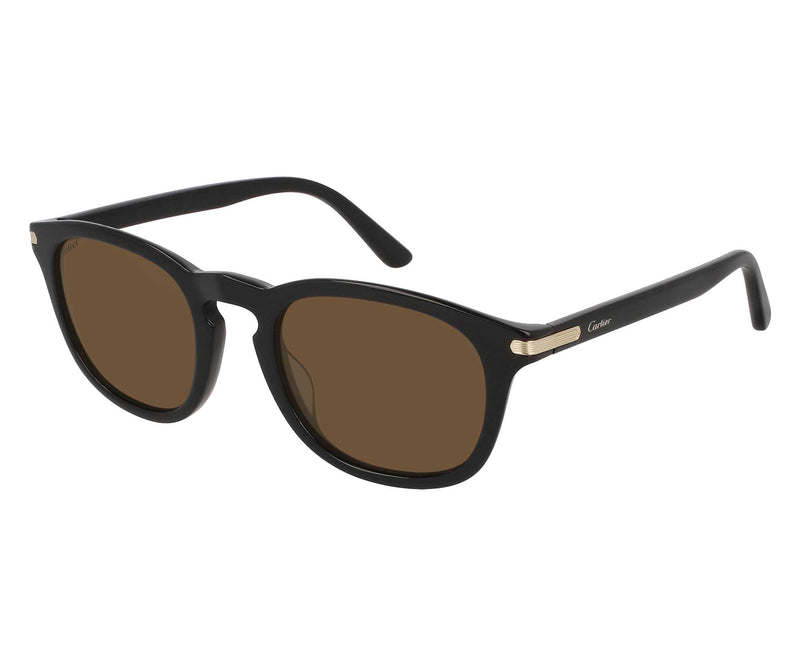 CARTIER_SUNGLASSES_CT0011S_001_SIDESHOT1
