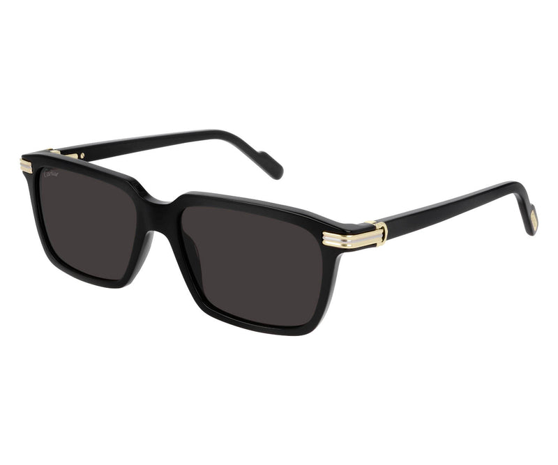 CARTIER_SUNGLASSES_CT_0220S_001_SIDESHOT1