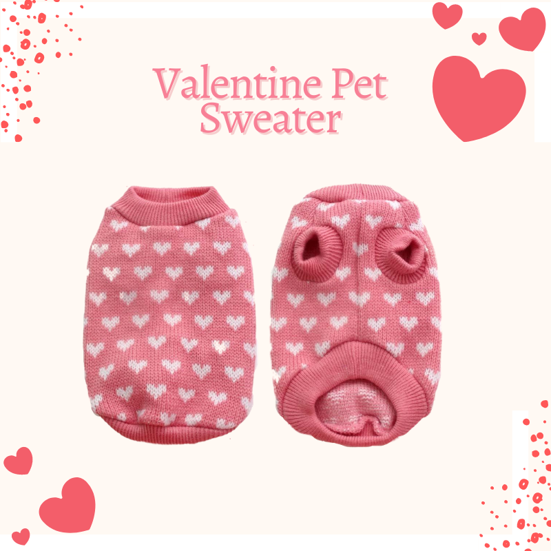 Valentine Pet Sweater