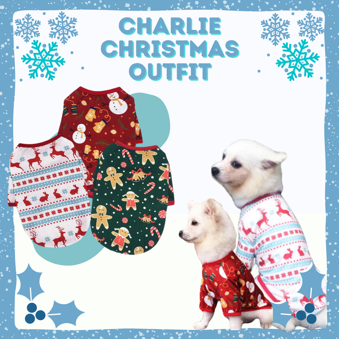 Charlie Christmas Outfit