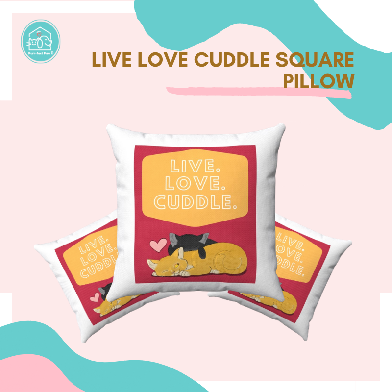 Live Love Cuddle Square Pillow