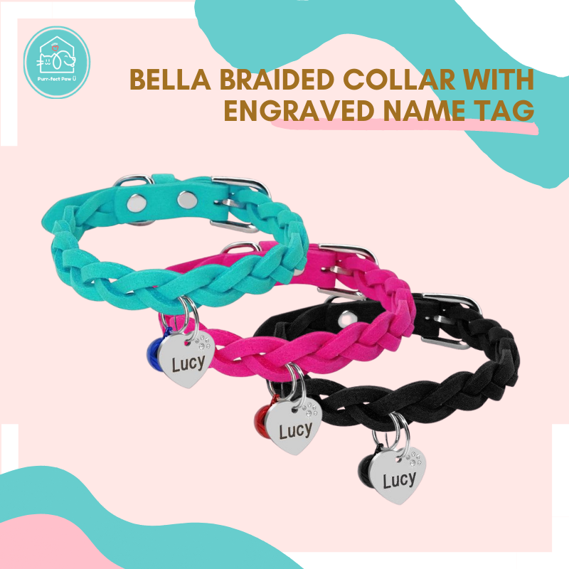 Bella Braided Collar with Engraved Name Tag
