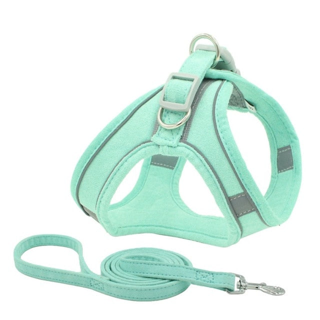 Reflective Pet Leash and Harness
