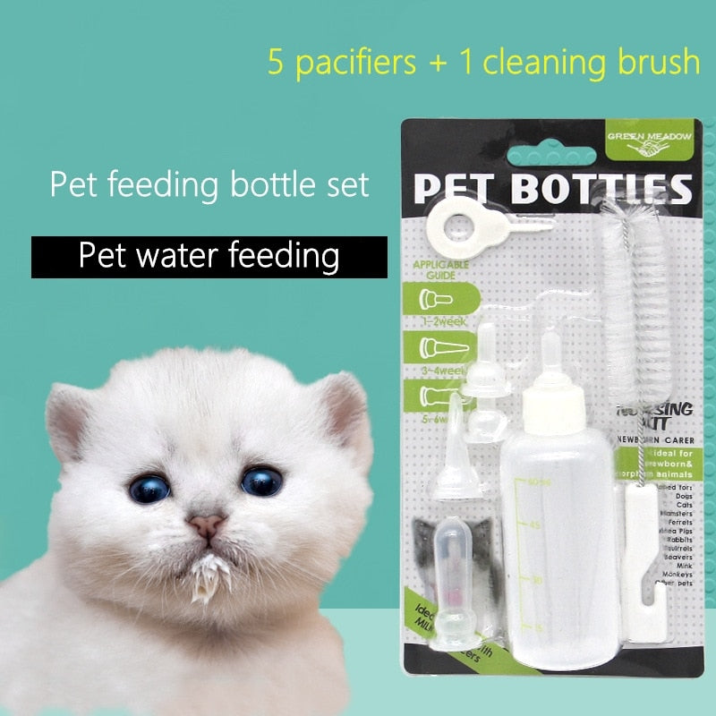 Pet Water Feeding Tools