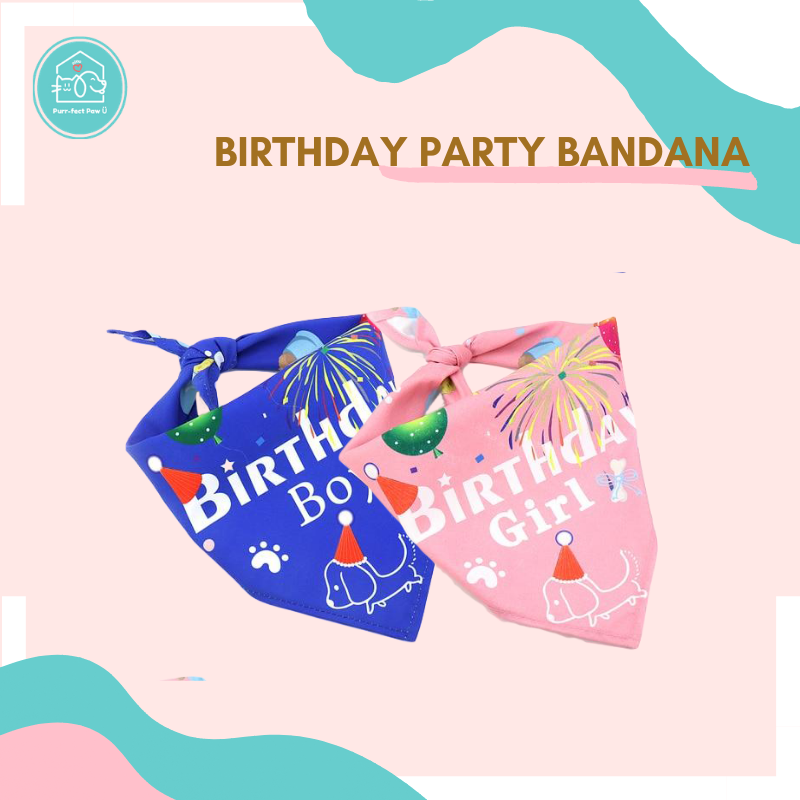 Birthday Party Bandana