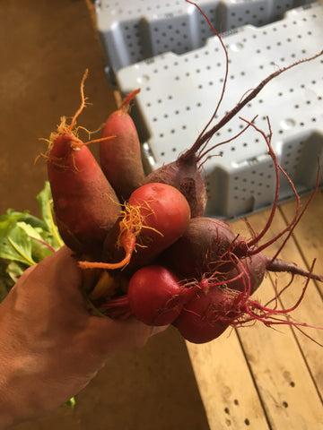 Beets, mixed bunch.