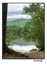 Load image into Gallery viewer, Note Card – Chocorua Summer Vertical