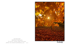Load image into Gallery viewer, Note Card – Fall Spotlight