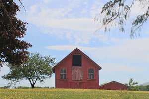 Dandy Little Barn Photo – Stretched Canvas or Foam-board Prints