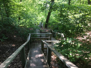 Crothers Woods Trail, Toronto, ON - Lunavoy