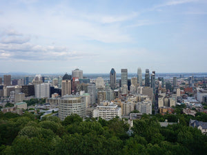 Biking Team Building Activities on Mount Royal, Montreal, QC