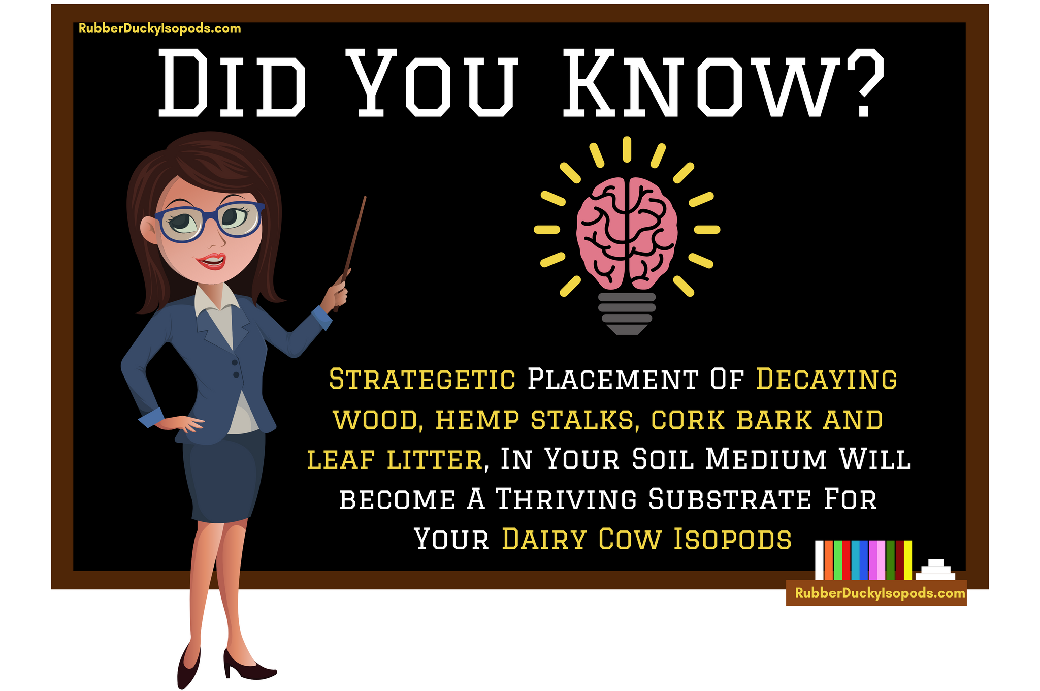 Dairy Cow Isopods Infographic #1