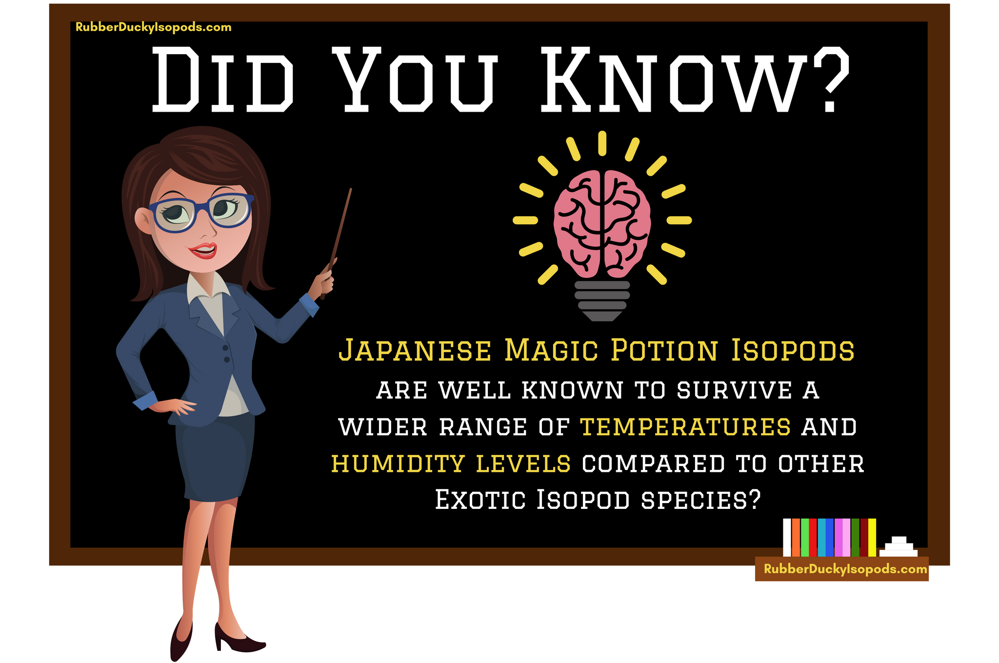 Japanese Magic Potion Isopods Infographic (Temperature & Humidity)