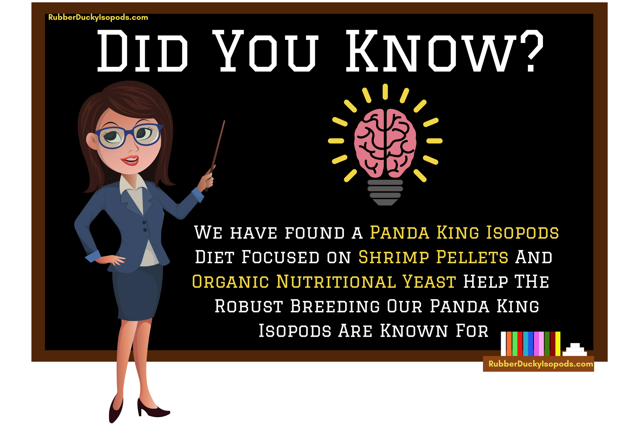 Panda King Isopods Diet Infographic