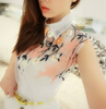 Floral Organza Sleeveless Collar Blouse