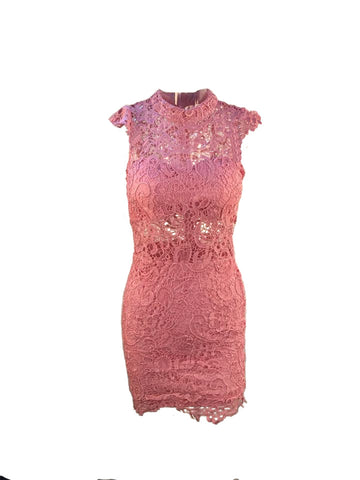 Pretty in Pink Absolute Lace Bodycon Dress