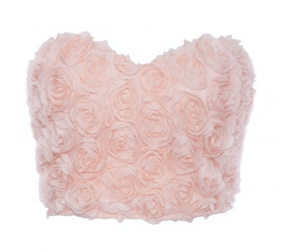 Pink Rose Mesh Bustier Crop Top