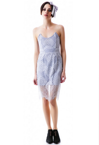 Graceful Swan Lace Dress