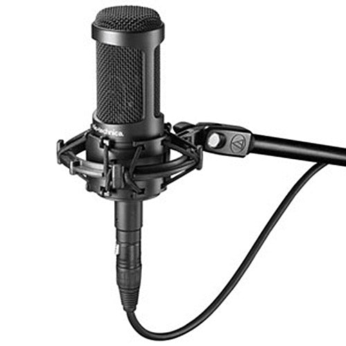 Audio-Technica AT2035 Cardioid Condenser Microphone (Black)