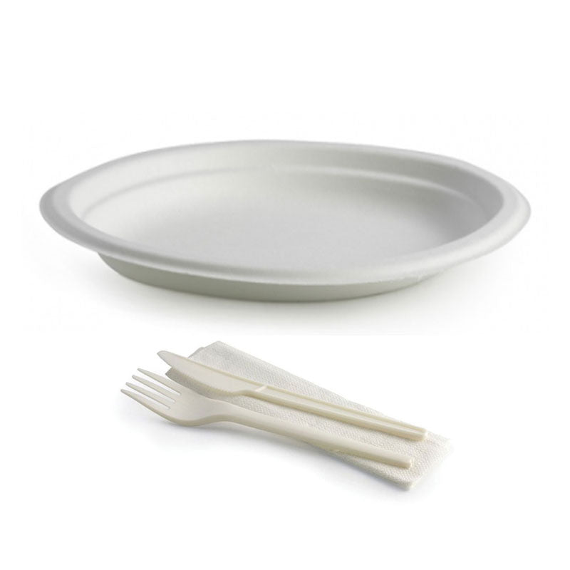 Cutlery and Plate Set