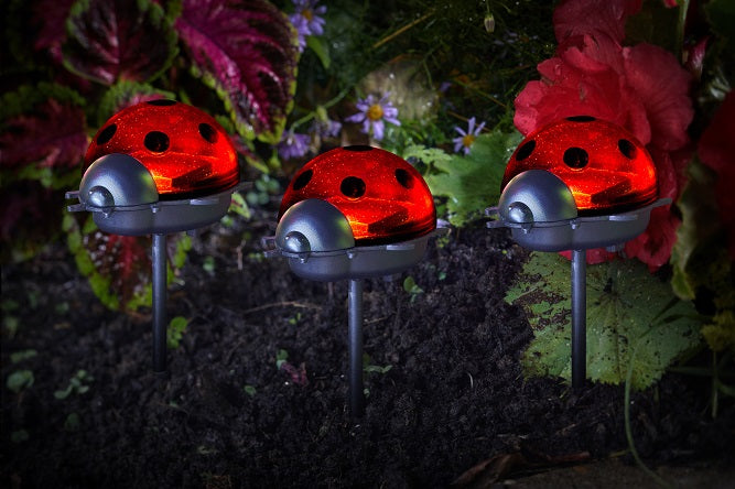 Ladybird Stake Lights 3 pack