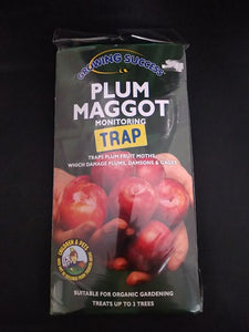 Plum Maggot Monitoring Trap