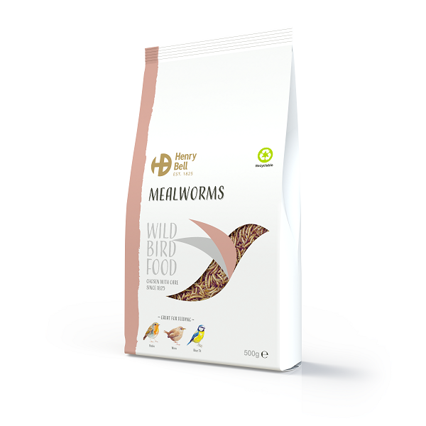 Mealworms 500g
