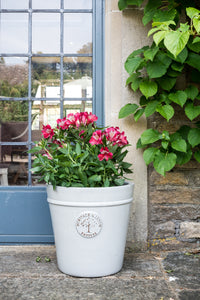 Heritage Conical White Pot