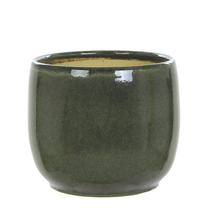 Green Spirit Pot