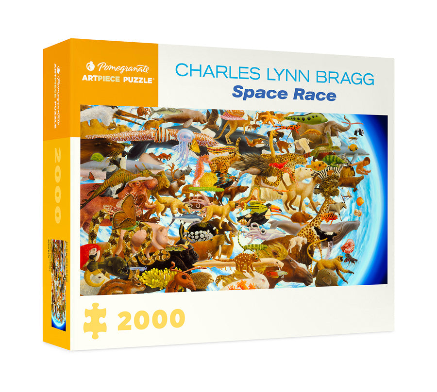 Space Race Puzzle by Charles Lynn Bragg