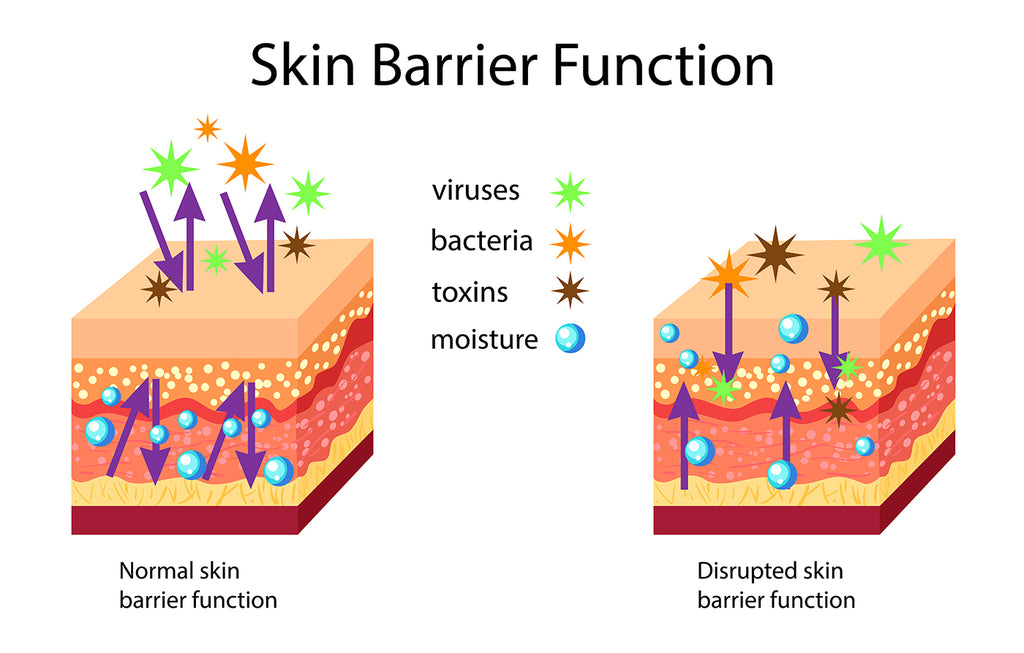 Skin Barrier Protection