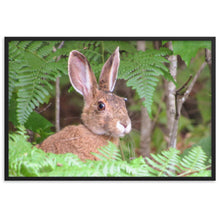 Load image into Gallery viewer, Framed matte paper poster (Maine Snowshoe Hare)