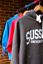 Load image into Gallery viewer, Ultrasoft University of Sussex Hoodie