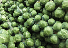 Load image into Gallery viewer, BRUSSELS SPROUTS