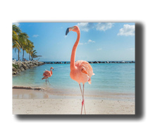 Laden Sie das Bild in den Galerie-Viewer, 3D Poster mit Flamingo