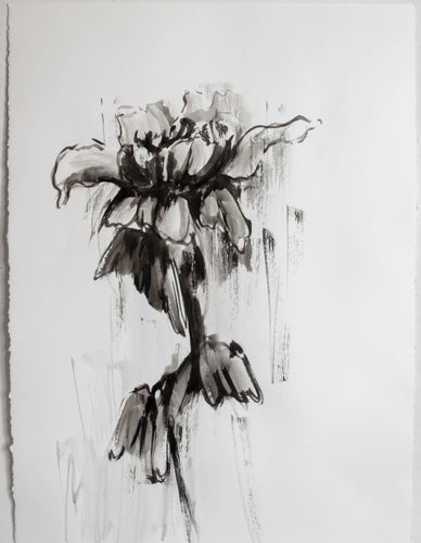 Large Original Peony Drawing #111