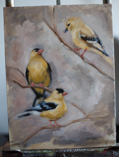 Original Goldfinch Oil Painting