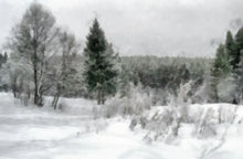 Load image into Gallery viewer, Winter in the Woods