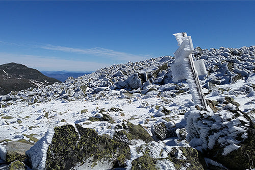Ice Rime on Mt Washington