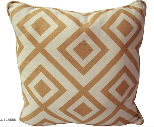 Graphic Throw Pillow Made by Reposed NY