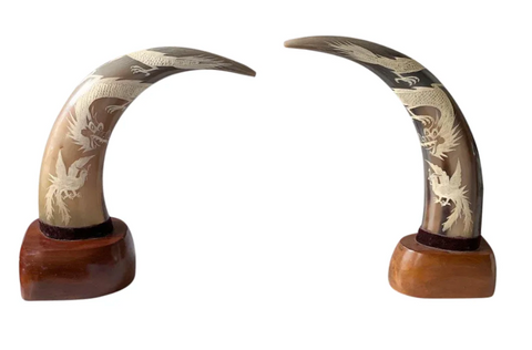 Pair, Mid Century Carved Horns on Bases