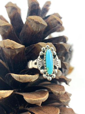 Turquoise Ring Set in Solid Sterling Silver