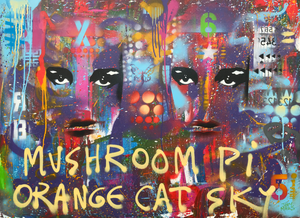 Mushroom Pi Orange Cat Sky
