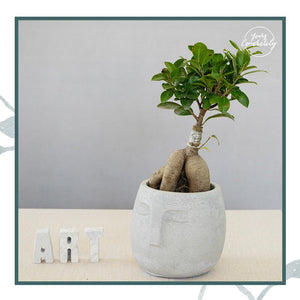 Face Planter / Organiser