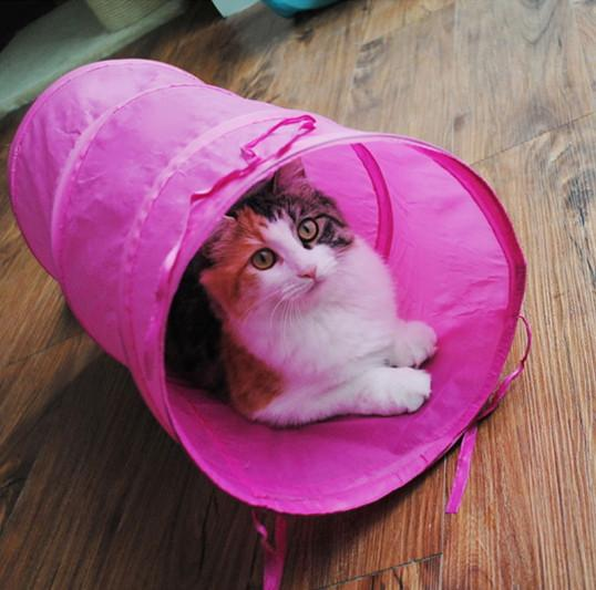 Crinkly Kitten Tunnel Toy With A Ball Play