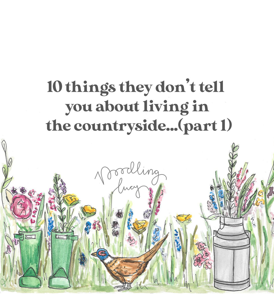 10 Things They Don't Tell You About Living In The Countryside... (part 1)