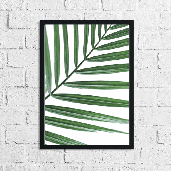 Palm Leaf Botanical Photography Room Simple Wall Decor Print