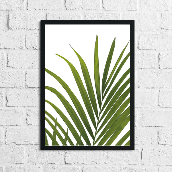 Palm Leaves 2 Botanical Watercolour Room Simple Wall Decor Print