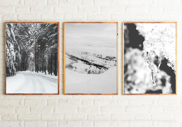 Winter Settings Photography Room Simple Wall Decor 3 Print Set