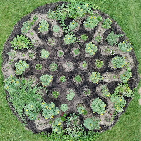 Our mandala garden also illustrates this and reminds us there are no straight lines in nature..